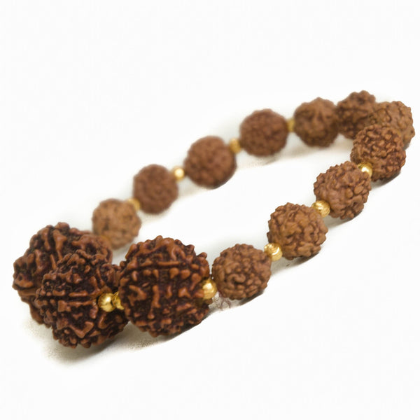 Rudraksha and Gold Vermeil Bracelet