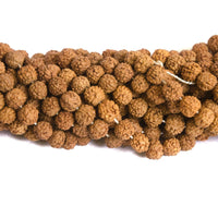 6mm Natural Rudraksha, 10pcs