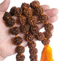 Large Rudraksha Necklace