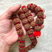 Large Rudrkasha Half Mala with Red Disc by Indiodyssey