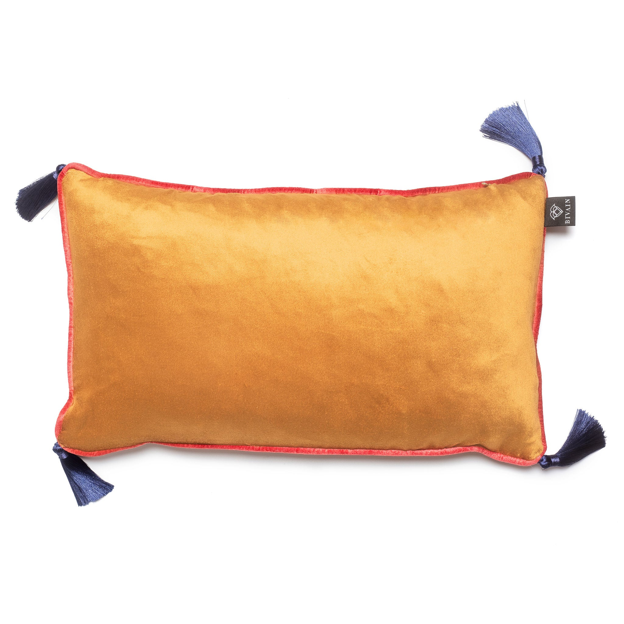 Burnt Orange Velvet Rectangular Cushion with Tassels