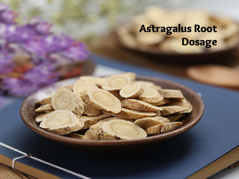Astragalus Root Dosage