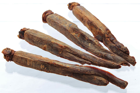 Panax Red Ginseng Roots