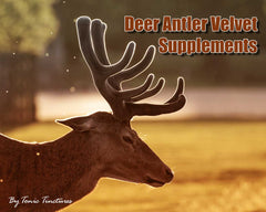 Deer Antler Velvet Tincture Supplement Collection
