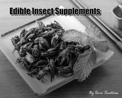 Edible Insect Tincture Supplement Collection