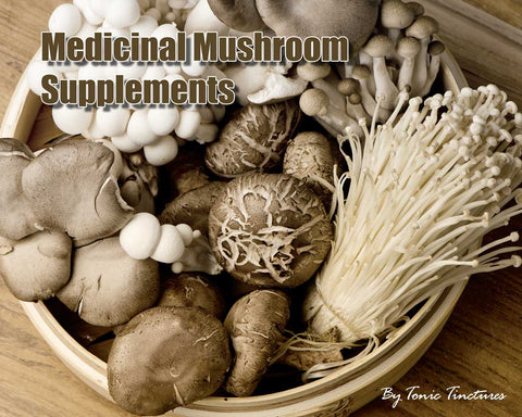 Medicinal Mushroom Tincture Supplement Collection