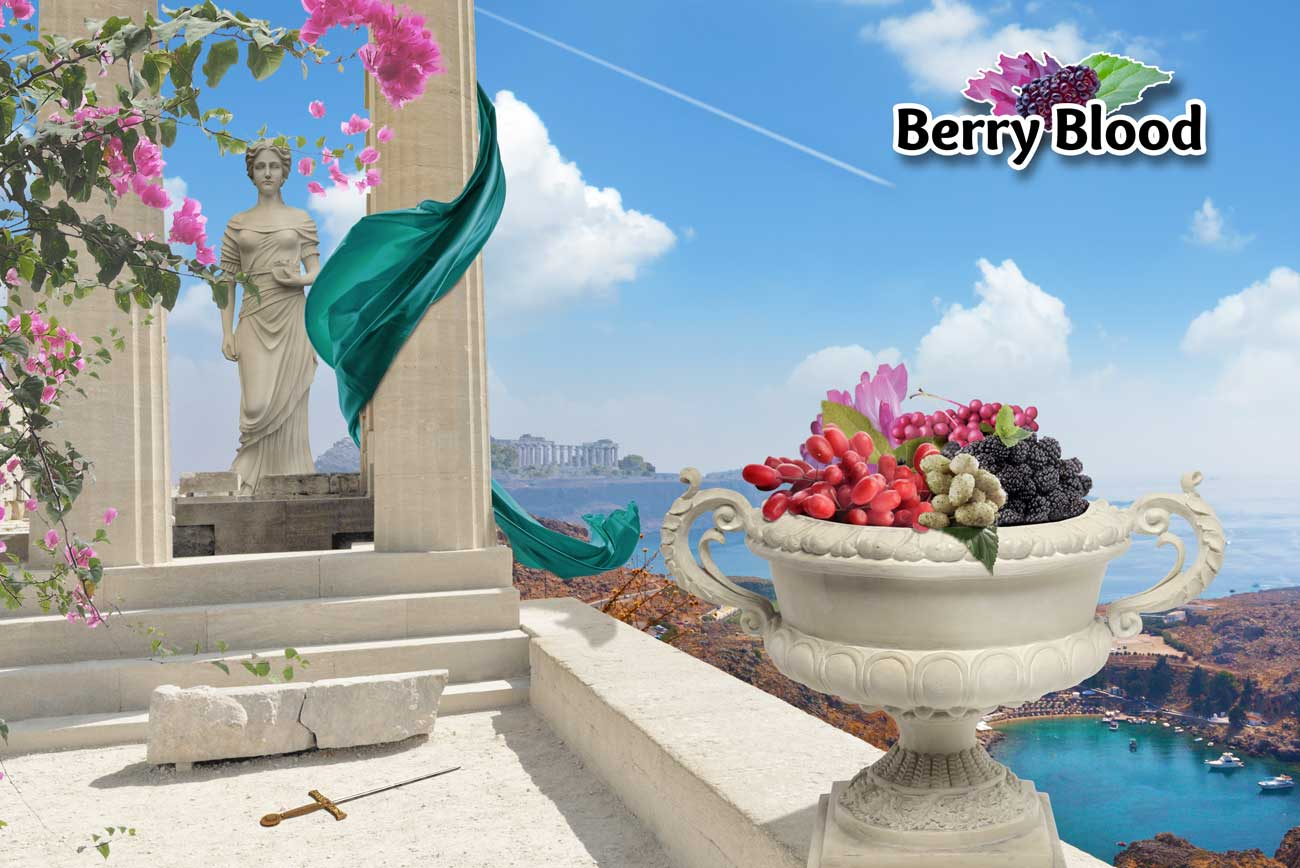 Berry Blood Supplement Poster