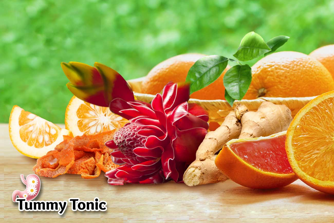 Tummy Tonic Supplement Poster