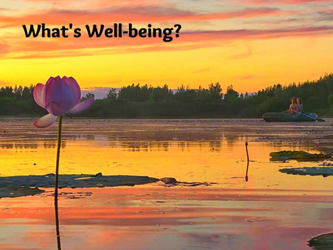 What's Well-being?