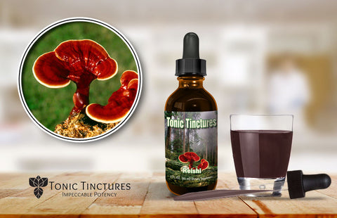 Tonic Tinctures Reishi Mushroom Fresh Batch