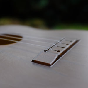 Outdoor Ukulele™ Tenor Brown Gold