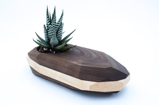 Geometric Wooden Planter -- Unique Wood Cactus Succulent Pot Terrarium - Alluforu