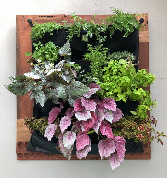 Vertical Living Wall Alluforu