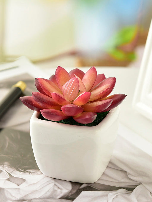Artificial Succulent Plant With Ceramic Pot - Alluforu