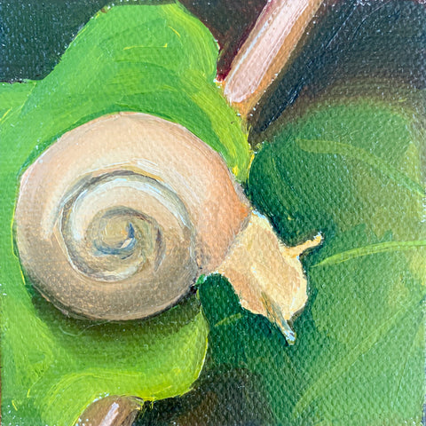 Follow Your Dreams Tiny Snail Painting - 3x3 Tiny Art - april bern photography