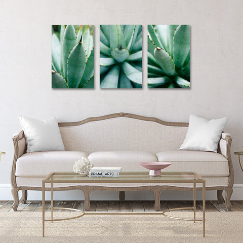 Ready to Hang Agave Gallery Wrapped Canvas- Set of 3