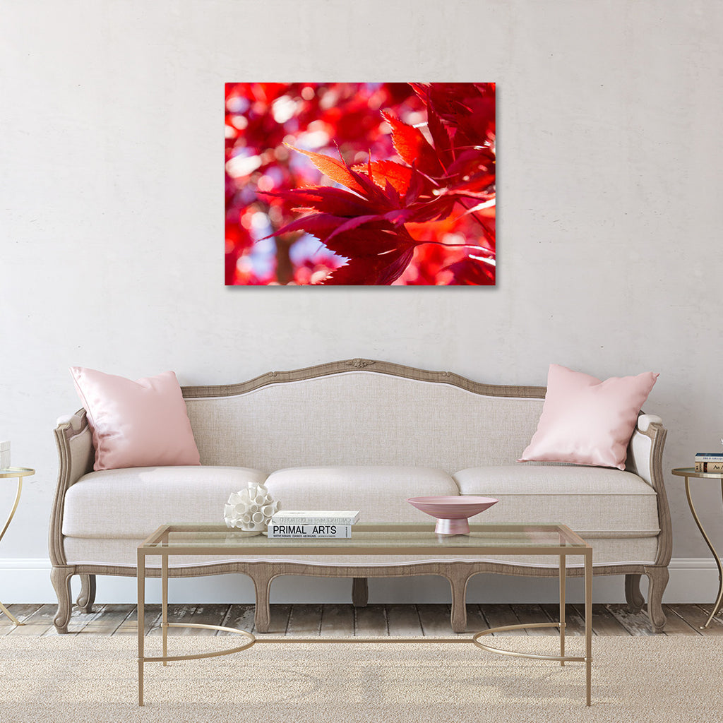 Red Leaves Canvas Art, Gallery Wrapped Canvas - april bern photography