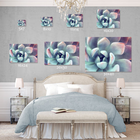 Ready to Hang Succulent Gallery Wrapped Canvas