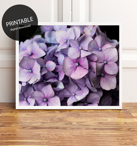 Printable Hydrangea Wall Art - Instant Download