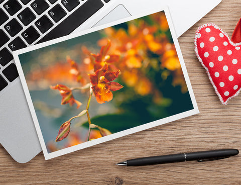 Orange Orchid Photo Notecard, Blank Floral Greeting Card - april bern photography