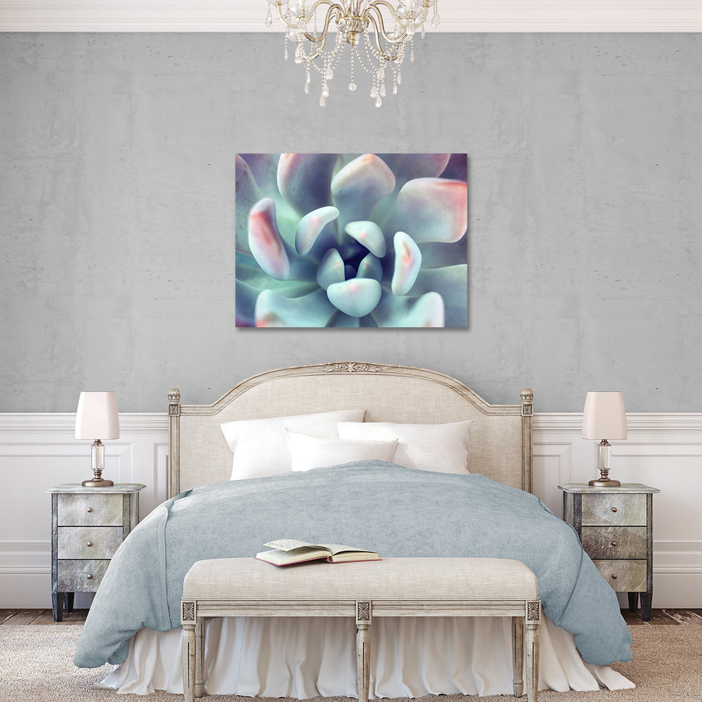 Succulent Gallery Wrapped Canvas - Ready to Hang Succulent Art - april bern photography