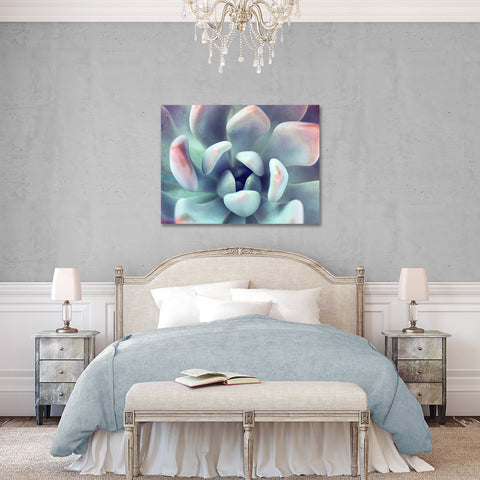 Succulent Gallery Wrapped Canvas - Ready to Hang Succulent Art