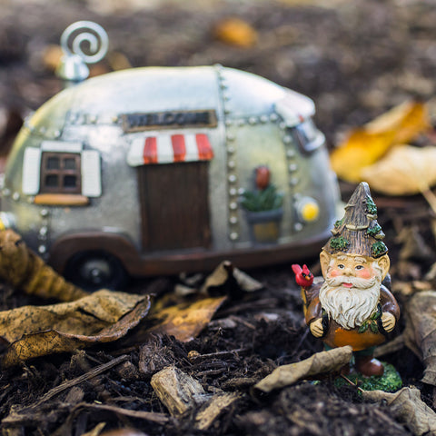 Adventure Gnome Fine Art Print