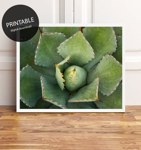 Printable Wall Art - Agave Instant Download
