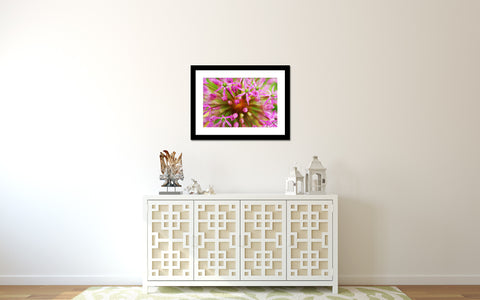 Pink Abstract Botanic Fine Art Print - april bern photography