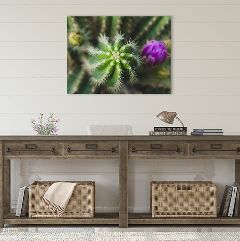 Cactus Wall Art - Ready to Hang Gallery Wrapped Canvas