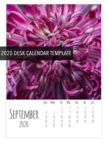 2020 Desk Calendar Template- Instant Download