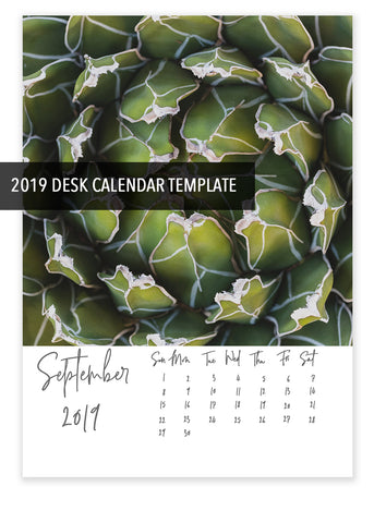 5x7 2019 Desk Calendar Template - DIY Calendar, Instant Download