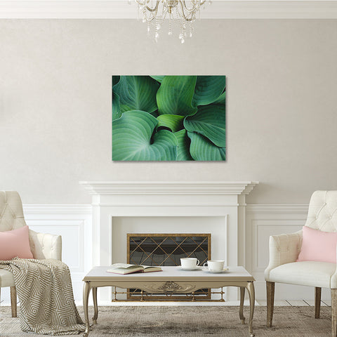 Hosta Leaves Gallery Wrap Canvas, Ready to Hang Canvas Wall Art