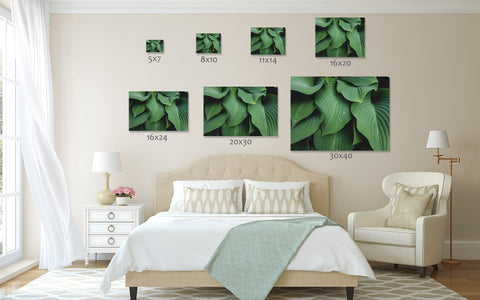 Abstact Hosta Leaves Wall Art- Green Home Decor - april bern photography