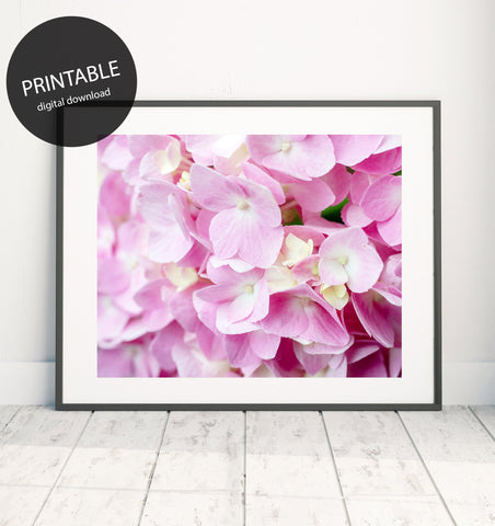 Printable Pink Hydrangea Wall Art - Instant Download