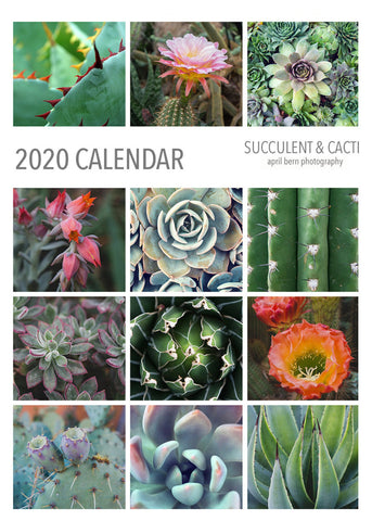 2020 Succulent and Cactus 5x7 Desk Calendar