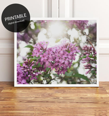 Lilac Printable Wall Art - Instant Download