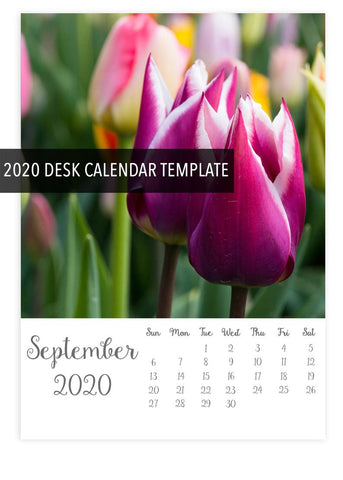 2020 5x7 Desk Calendar Template- Instant Download - april bern photography