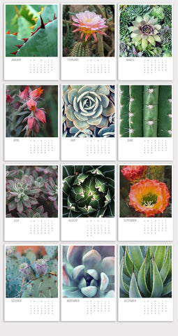 2020 Succulent and Cactus 5x7 Desk Calendar - april bern photography