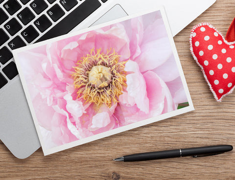 Pink Peony Any Occasion Card