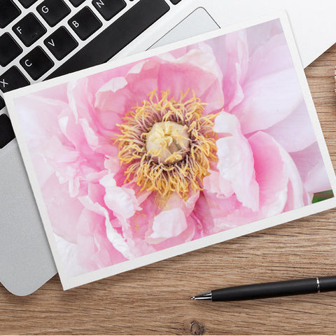 Pink Peony Photo Notecard - Blank Greeting Card
