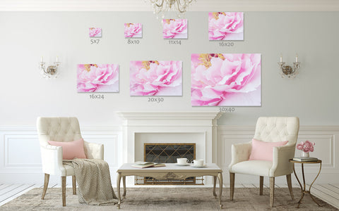 This peony fine art print is available in a variety of popular sizes