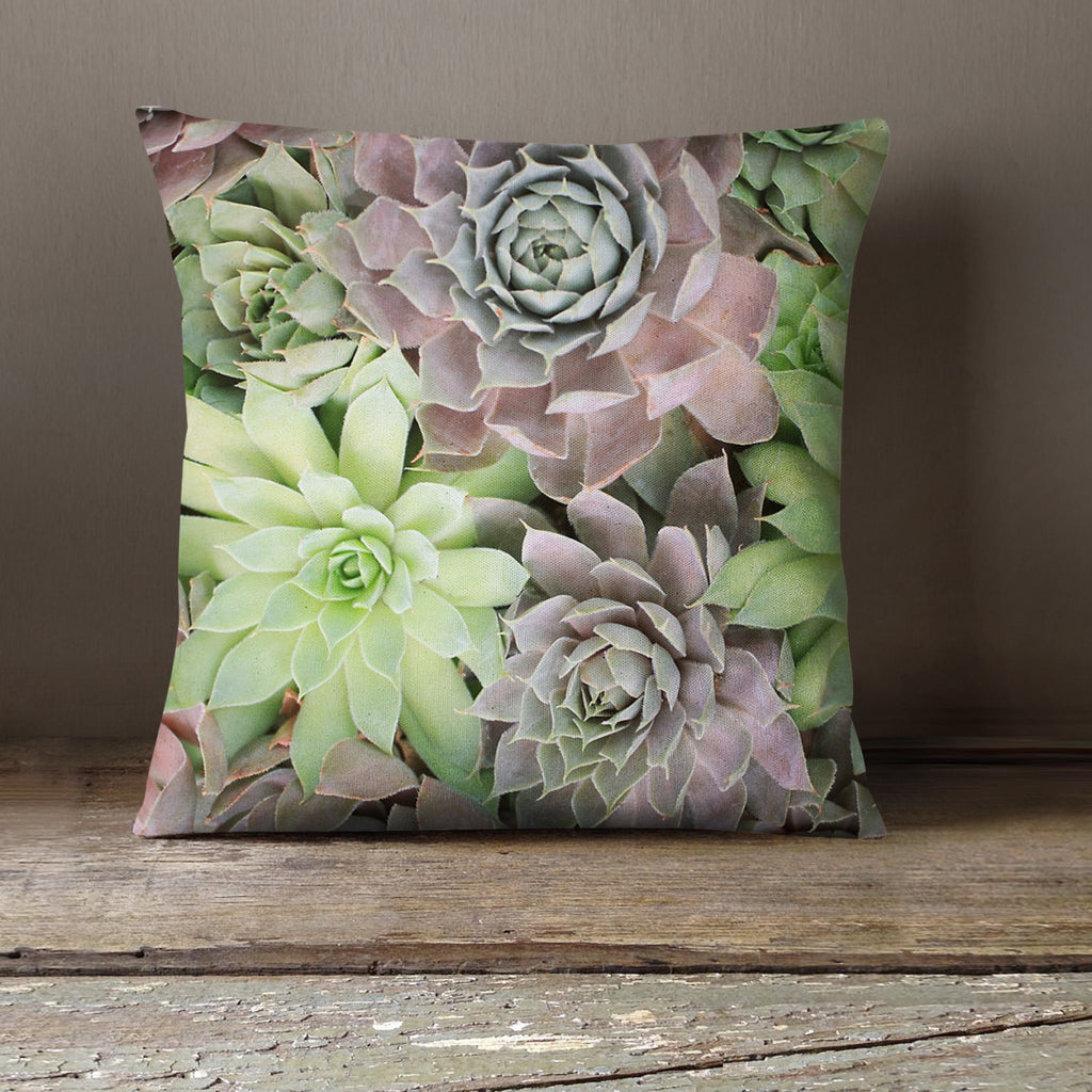 Succulent Decorative Throw Pillow Cover