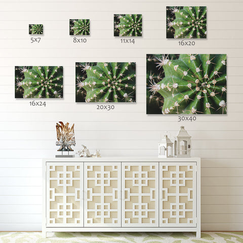 Cactus Wall Art - Ready To Hang Gallery Wrap Canvas Print - april bern photography