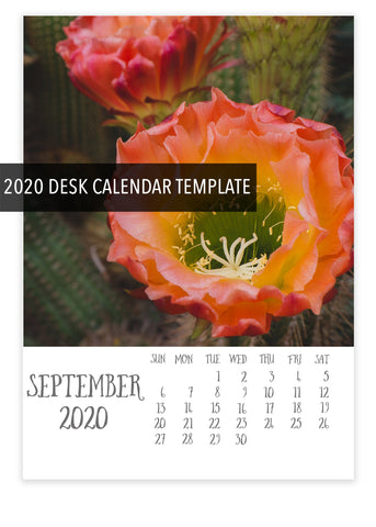 2020 5x7 Desk Calendar Template- Instant Download