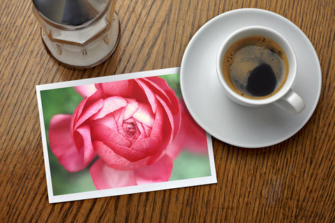 Set of 5 Assorted Floral Notecard - Any Occasion Blank Flower Greeting Cards - april bern photography