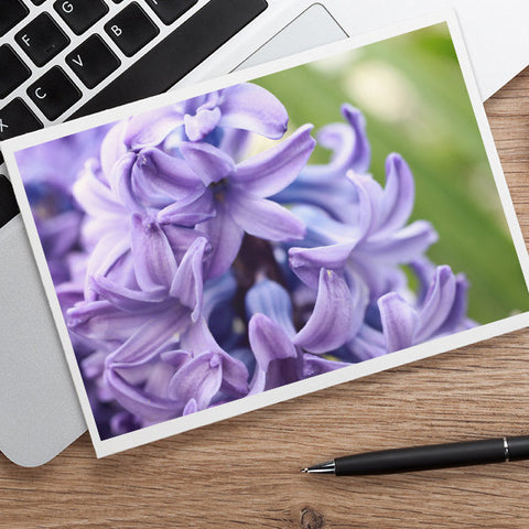 Hyacinth Photo Notecard, Spring Floral Greeting Card