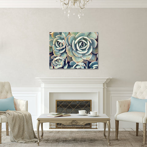 Ready to Hang Succulent Gallery Wrapped Canvas- Succulent Wall Decor