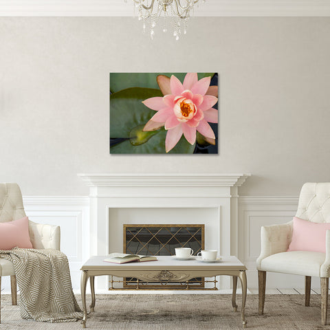 Waterlily Gallery Wrapped Canvas - Ready to Hang Floral Canvas Art - april bern photography