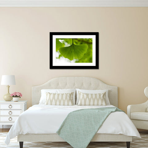 Ginkgo Leaf Fine Art Photography Print
